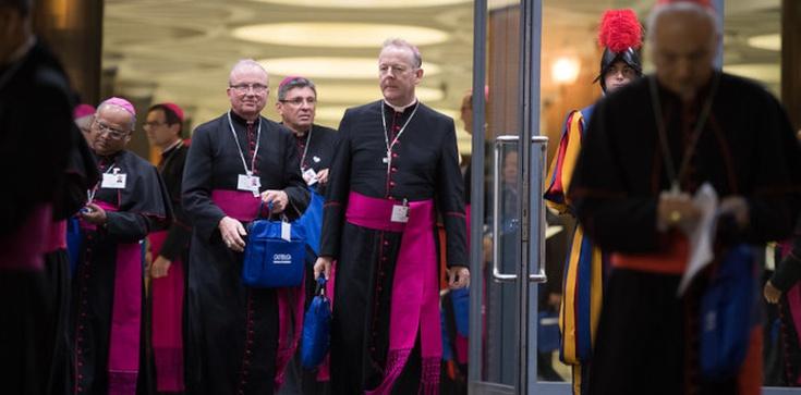 Po co nam ci wszyscy biskupi? Adwentowe rozmyślania cz. IV  - zdjęcie