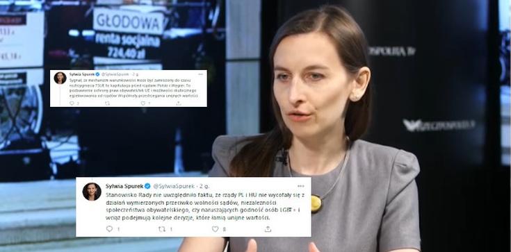 Spurek: UE skapitulowała przed Polską - zdjęcie