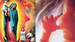 Modlitwa do Matki Bożej za nienarodzonych  - miniaturka
