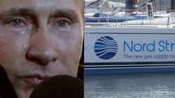 Sankcje USA rujnują Nord Stream 2! 18 firm wycofuje się z projektu  - miniaturka