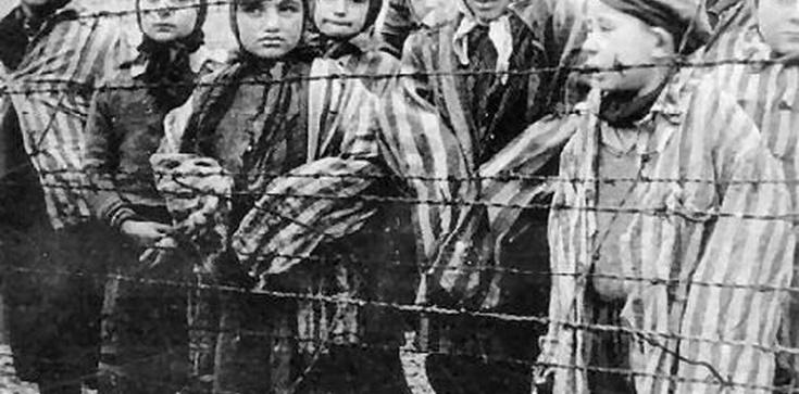 """Państwo w remoncie: Koniec ze szkalowaniem Polski! Kara więzienia za """"polskie obozy""""? - zdjęcie"""