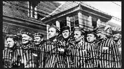 Alina Cała: Polacy odpowiadają za śmierć 3 mln Żydów - miniaturka