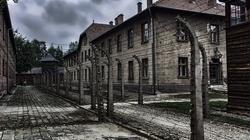 Żydowska perspektywa obecności Boga w historii po Auschwitz, wg Emila Fackenheima - miniaturka