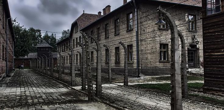 Żydowska perspektywa obecności Boga w historii po Auschwitz, wg Emila Fackenheima - zdjęcie