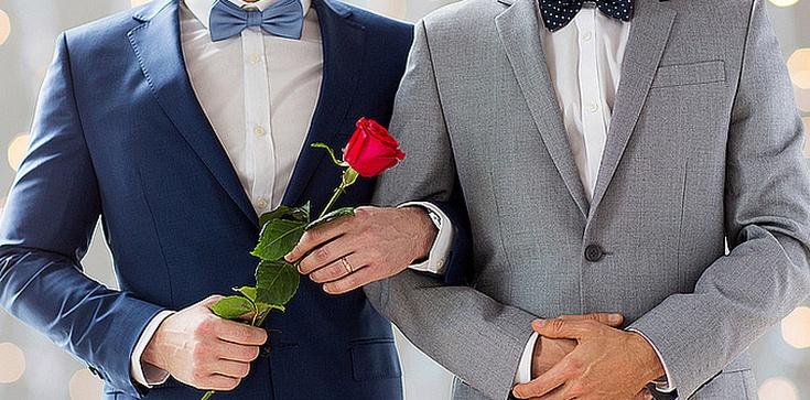 Zalegalizowali homomałżeństwa łamiąc konstytucję - zdjęcie