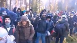 """[Wideo] Straż Graniczna; """"Siłowe forsowanie granicy"""" przez imigranów na jednym odcinku - miniaturka"""