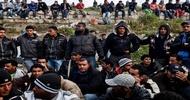 Prawie milion uchodźców na terenie Niemiec!