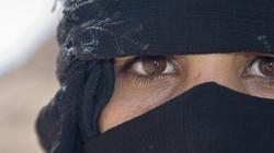 Islamski profesor: Allah pozwala gwałcić chrześcijanki - miniaturka