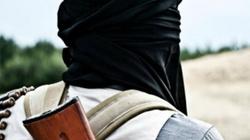 Terroryści zamordowali 1500 osób! - miniaturka