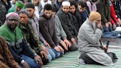 Jak umiarkowani są umiarkowani muzułmanie - miniaturka