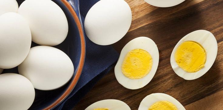 Jaja to samo zdrowie: 50 lat kłamstwa jajczarskiego - zdjęcie