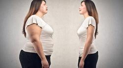 Kiedy otyłość może uratować życie? - miniaturka