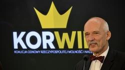 Członkowie KORWINA: Gwałcić trzeba tak by nie zgłosiła - miniaturka