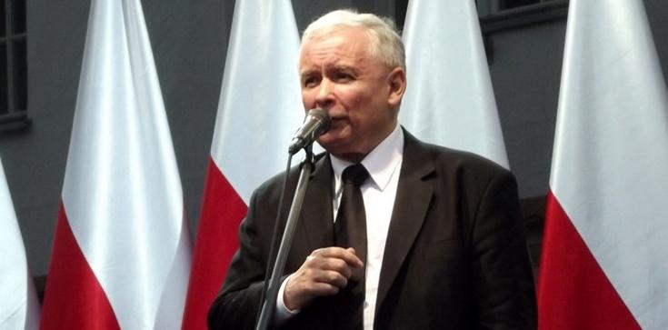'Kaczyński wygrywa z opozycją 10:1' - zdjęcie