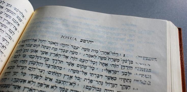Katolicy, a nie Żydzi i protestanci, zachowali całość Starego Testamentu - zdjęcie