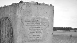 Poseł PiS: Żydów w Jedwabnem zamordowali Niemcy - miniaturka