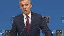 Stoltenberg tłumaczy, dlaczego Unia Europejska nie zastąpi NATO - miniaturka