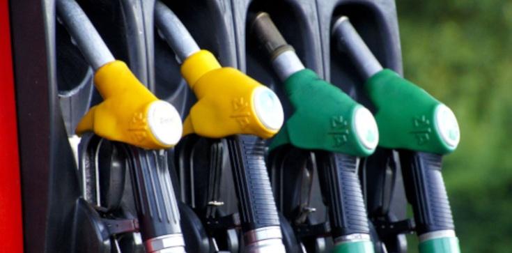 Unijna dyrektywa spowoduje ogromne podwyżki. Litr paliwa - 8 zł! - zdjęcie