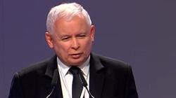 Kolosalna przewaga PiS. Taki sondaż to marzenie Jarosława Kaczyńskiego - miniaturka