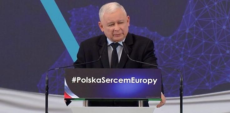 Prezes PiS OSTRO o pedofilach: Ani purpura, ani Nobel, ani Oscar nie ochroni ich przed karą!!! - zdjęcie