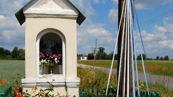 Ks. Marcin Klin: Historia nabożeństwa majowego - miniaturka