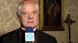 Kard. Müller: Słowa papieża o homoseksualistach nie są dla wiernych wiążące - miniaturka