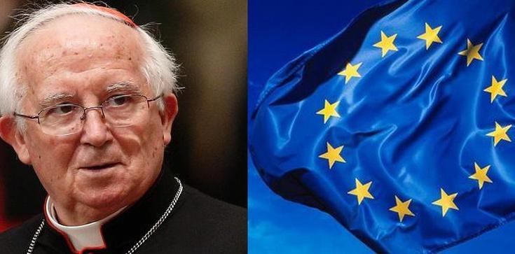 Kardynał prześladowany za krytykę Homo-Gender! - zdjęcie