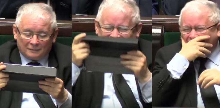PSL 'dowcipne' jak dziura w moście! Przekonują, że prezes PiS... zachęca do głosowania na KE - zdjęcie