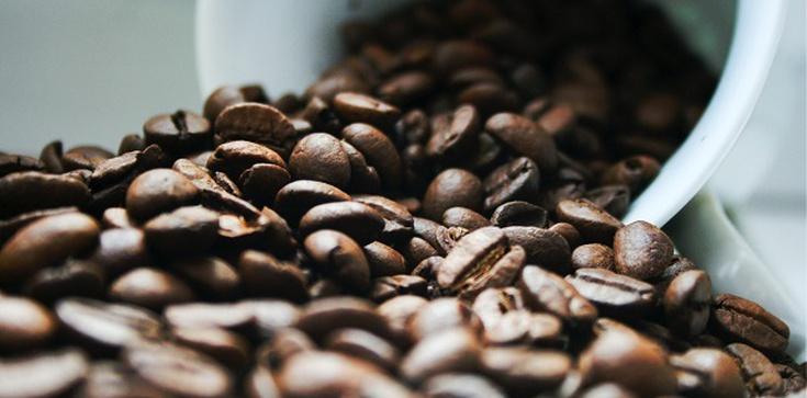 Jaką kawę do ekspresu kupić? - zdjęcie
