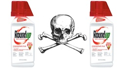 Producent Roundup ma zapłacić 2 mld odszkodowania. Za nowotwór  - miniaturka