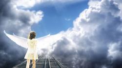 Ateiści i Buddyści wobec śmierci klinicznej - miniaturka