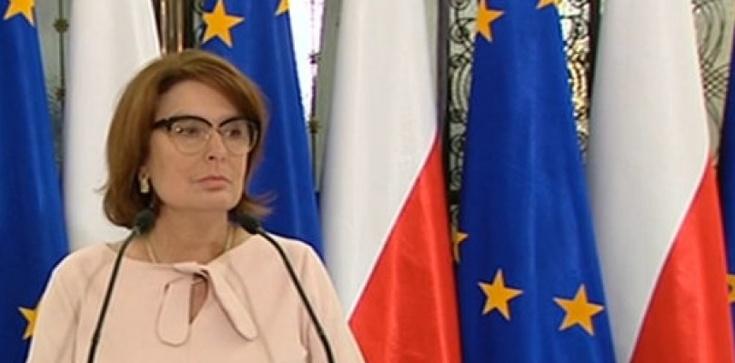 Kidawa-Błońska przyznaje: Sondaże są bardzo bolesne - zdjęcie