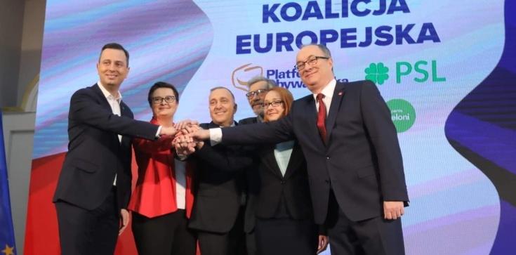 Były europoseł PSL: Koalicja Europejska? Toż to strefa śmierci!!! - zdjęcie