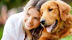 Terlikowska: Pies też człowiek, urlop się należy - miniaturka