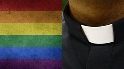 Kościół stygmatyzuje homoseksualnych księży? ,,Homoseksualiści stronią od seminariów'' - miniaturka