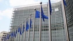 KE chce, aby wyborami w Polsce zajęła się Rada UE - miniaturka