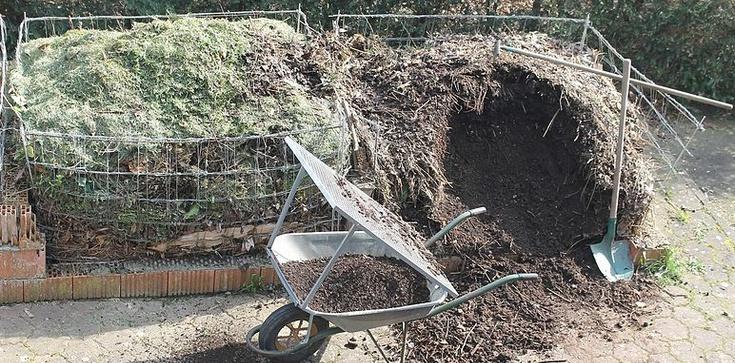 W Ameryce robią z ludzi kompost - zdjęcie