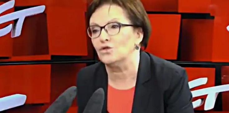 Kopacz: Przemoc domowa jak donoszenie na Polskę - zdjęcie