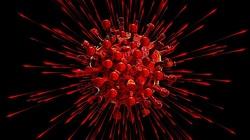 Kolejna osoba w Polsce zakażona zmutowanym koronawirusem! - miniaturka
