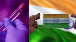 Iwermektyna. Czy to ona zahamowała pandemię w Indiach?  - miniaturka