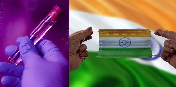 Iwermektyna. Czy to ona zahamowała pandemię w Indiach?  - zdjęcie
