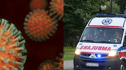 Kolejny rekord zakażeń w Polsce. Ponad 16 tys. przypadków  - miniaturka