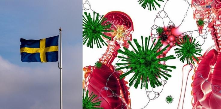 Szwecja: Zabijanie seniorów zarażonych koronawirusem - zdjęcie