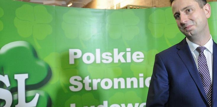 Dr Jerzy Bukowski: Co wybierze PSL? - zdjęcie