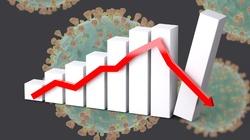Jak bardzo ucierpi gospodarka? Prognoza Goldman Sachs - miniaturka