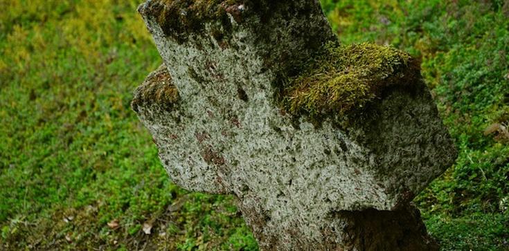 Niezwykłe! Tysiącletni krzyż odkryty w Himalajach - zdjęcie