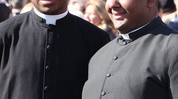 Watykan. Molestowanie za namową rektora w niższym seminarium -  prokurator żąda 6 lat więzienia - miniaturka