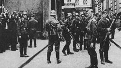 Wystawimy Niemcom rachunek 250 tys. euro za każdego zabitego Polaka. To nie kara, tylko lojalność! - miniaturka