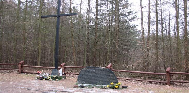 Dobranoc! Do widzenia! Cześć! Giniemy! 30 lat temu w Lesie Kabackim zginęły 183 osoby - zdjęcie