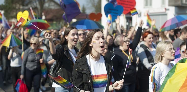 Z Internetu: Pamiętnik postępowej Europejki  - zdjęcie